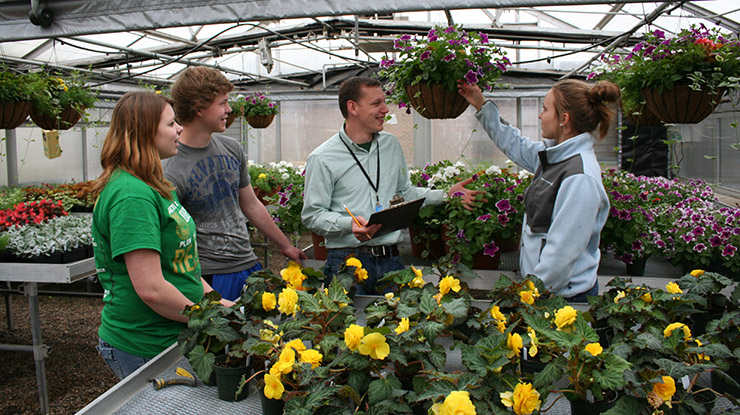 Group of students talks in front of a table covered in plants