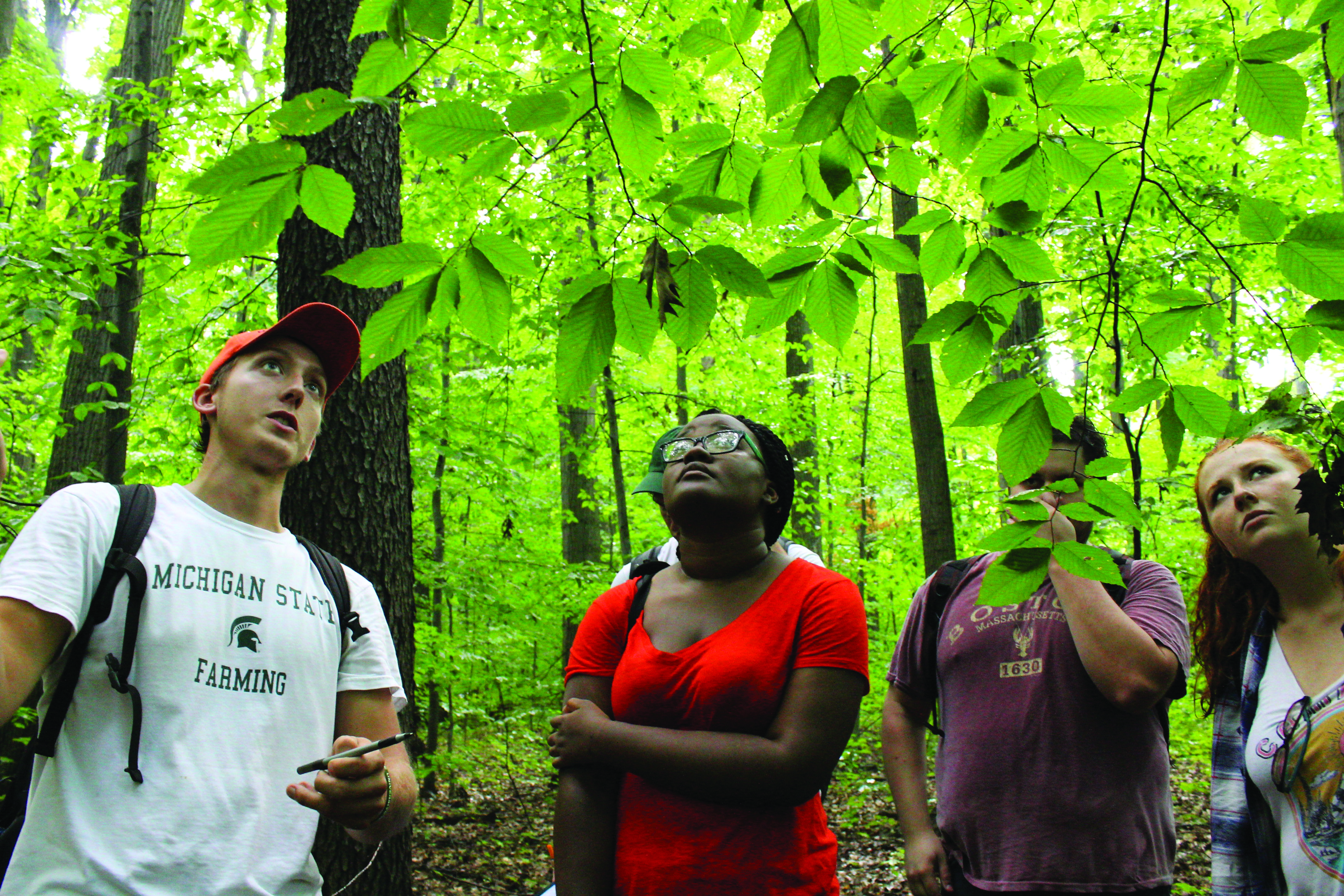 Students participate in a forest and foilage tour.