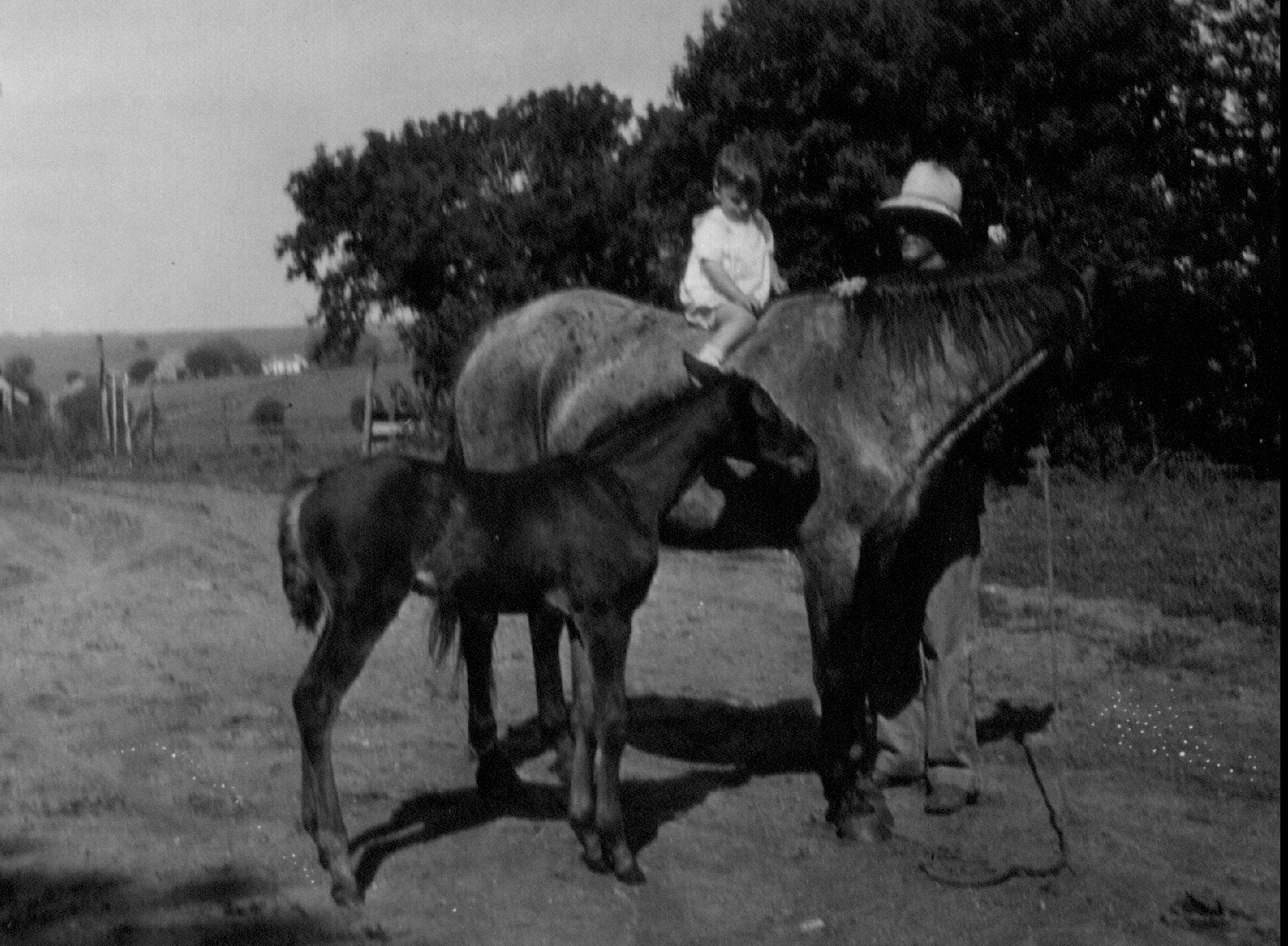 Schmid_and_Dad_on_farm_1935_Nebraska