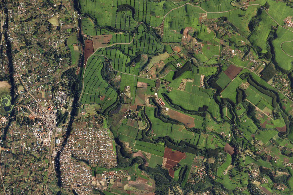 Aerial view of Malawi agricultural fields