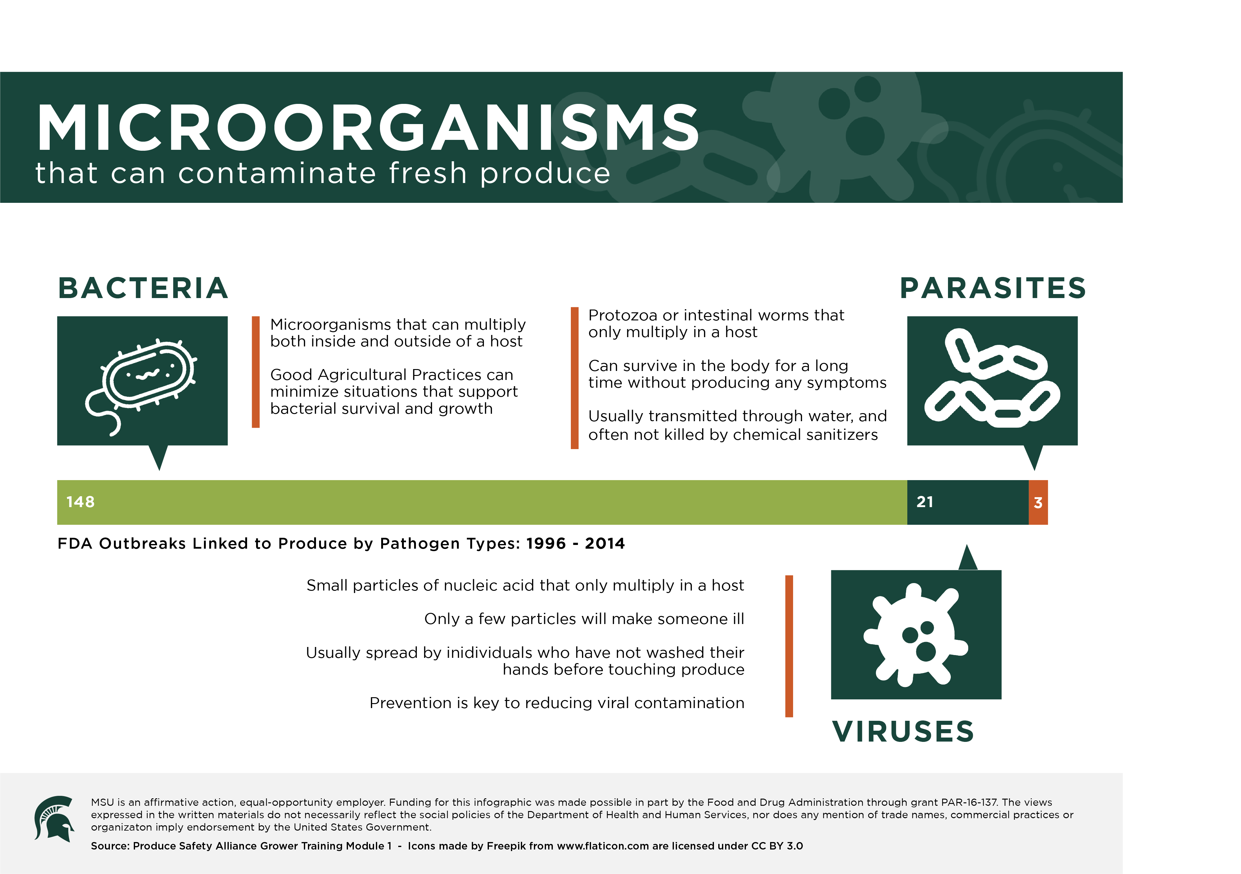 Microorganisms Infographic