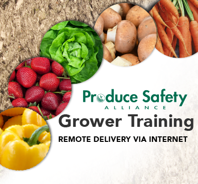 PSA Training Remote Delivery