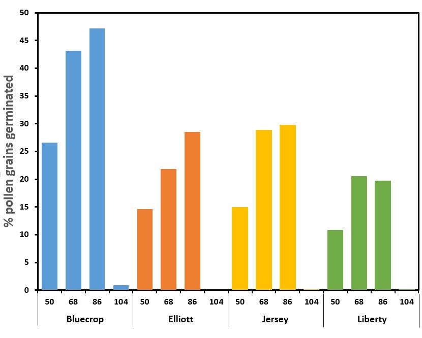 Germination rates of highbush blueberry pollen at four temperatures.