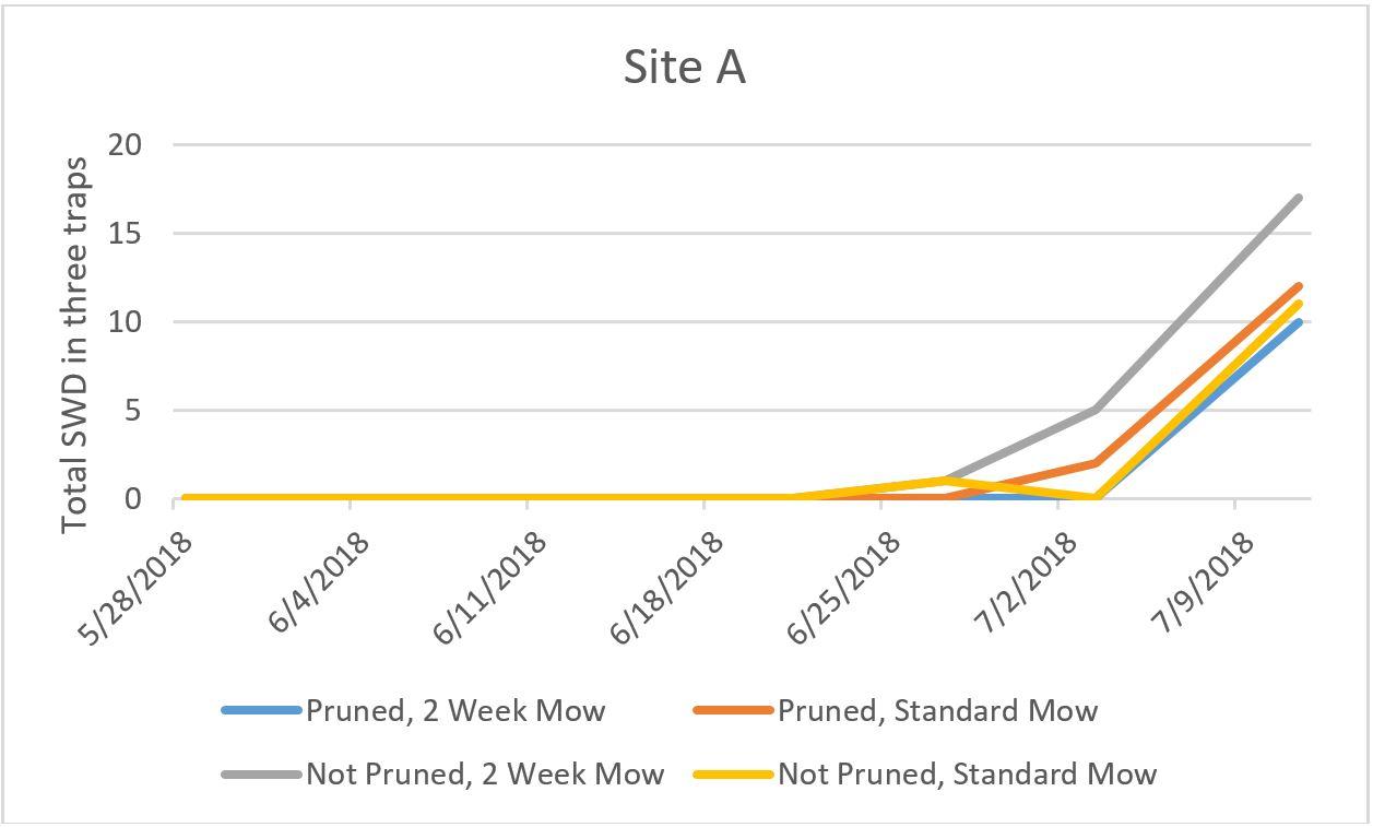 Site A graph