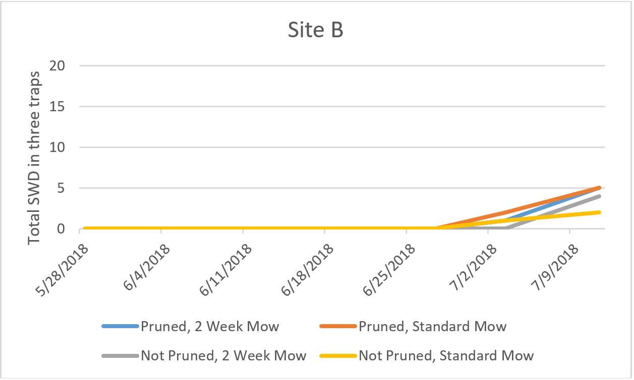 Site B graph