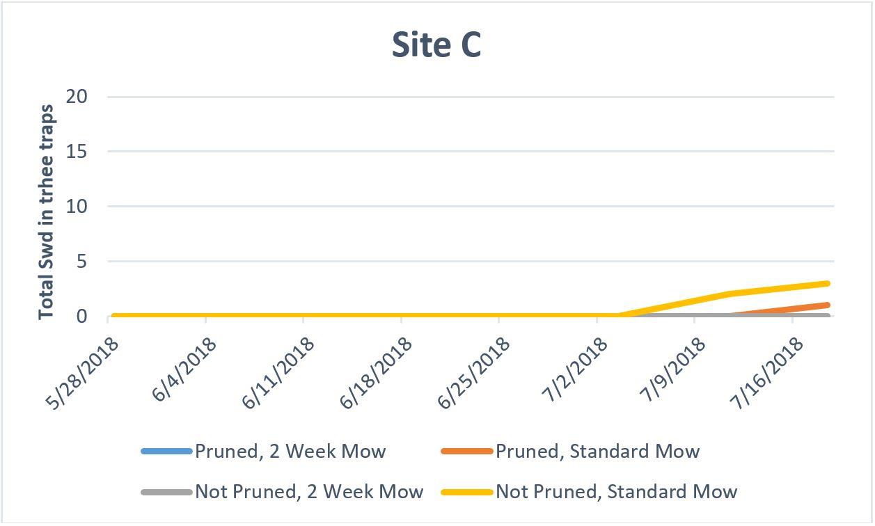 Site C graph