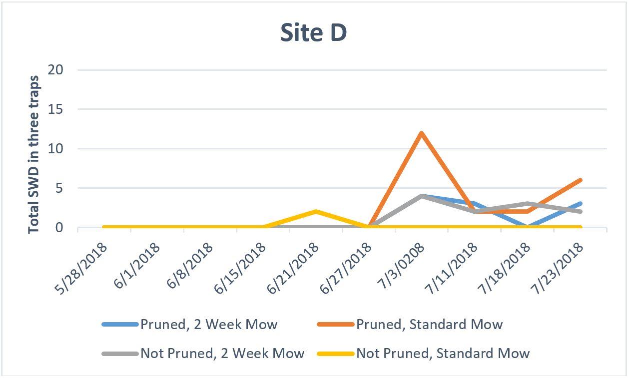 Site D graph