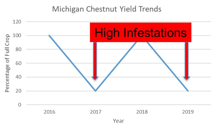 Graph of chestnut yields