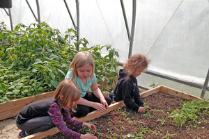Webster School students prepare one of the beds for planting the seedlings they nurtured from seed as part of their classroom project during a field trip to the MSU North Farm in Chatham, Michigan.