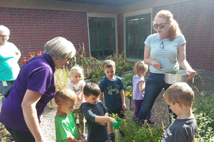 Fall 2020 Extension Master Gardener online class offered for Upper Peninsula residents