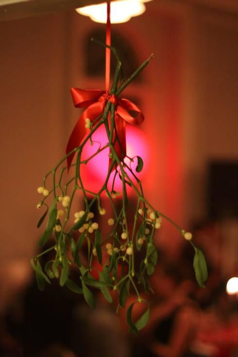 Mistletoe Science And Folklore Msu Extension
