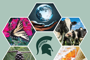 New scholarships for undergraduates interested in agricultural or natural sciences career