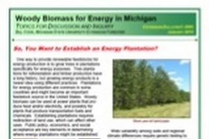 Woody Biomass for Energy in Michigan: So, You Want to Establish an Energy Plantation? (E3095)