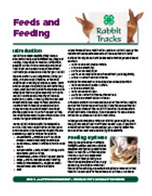 Rabbit Tracks: Feeds and Feeding - MSU Extension
