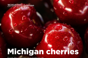 Bringing you the Michigan cherry on top