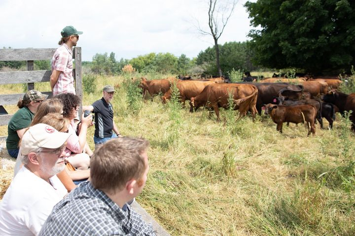 A group of livestock producers touring a cattle ranch.