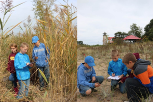 Students promote Lake Huron biodiversity during Charity Island excursion
