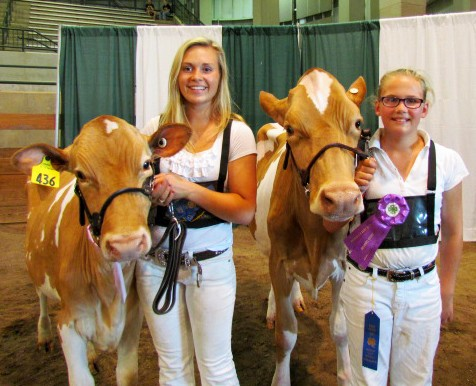 Chelsea Barnes (Ottawa County, left) and Amber Szakel (Shiawassee County, right) celebrate with their winning Guernsey heifers at the 2015 Michigan 4-H Youth Dairy Days.