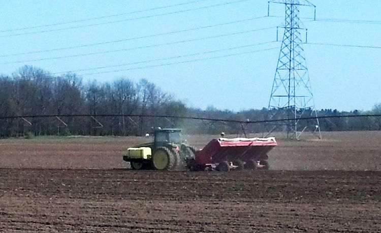 Potatoes being planted for the 2016 season. All photos by Fred Springborn, MSU Extension.