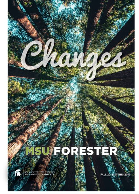 MSU Forester 2018/2019 view looking up in forest