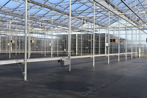 Conveyors in a greenhouse