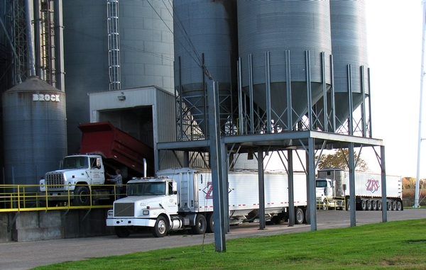 Truck dumping soybeans. All photos by Zeeland Farm Services