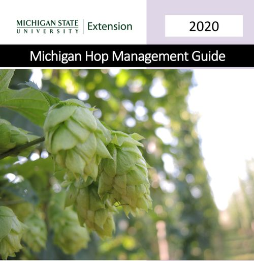 Michigan Hope Guide cover