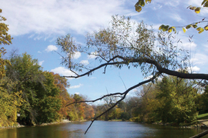 Shiawassee River, courtesy of the Friends of the Shiawassee River