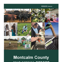 2017 Montcalm County Annual Report cover