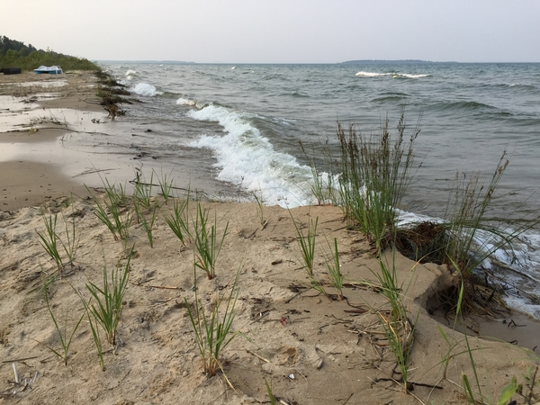 Photo: Michigan Sea Grant