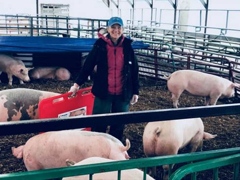 A woman standing in a pen filled with pigs