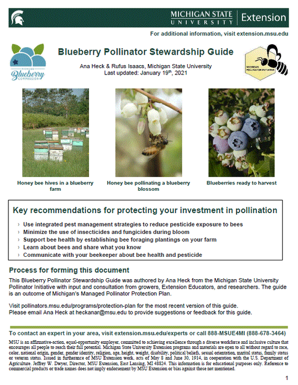 cover page of the blueberry pollinator stewardship guide