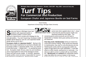 European Chafer and Japanese Beetle on Sod Farms (E0004TURF)