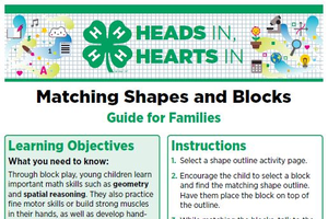 Matching Shapes and Blocks cover page.