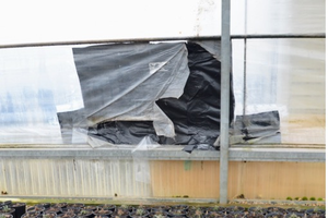 Inspect greenhouses to mitigate heat loss during sub-zero temperatures