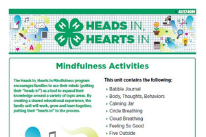 Thumbnail of the Heads In, Hearts In Mindfulness Activities packet.