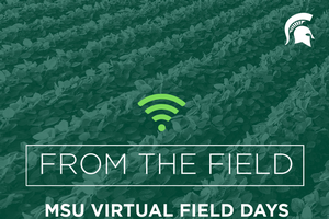 MSU to host agriculture and natural resources field days from afar