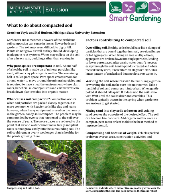 What To Do About Compacted Soil Msu