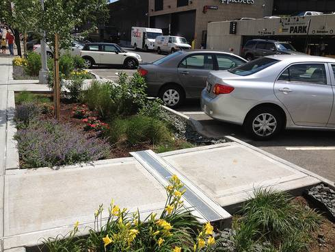 Cars are angle parked along a street with stores shown behind them. Between a sidewalk and the parking area there are several gardens planted with flowers and trees to help absorb water.