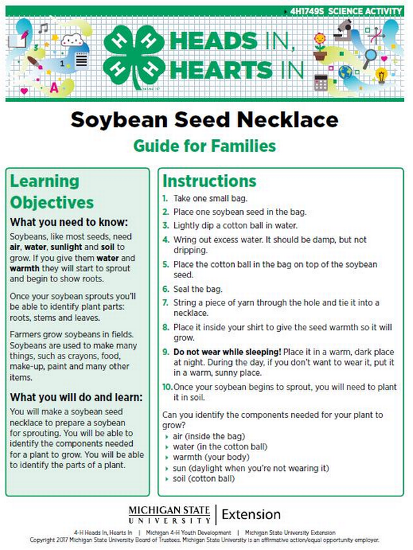 Soybean Seed Necklace cover page.