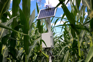 MSU researcher awarded grant to develop low-cost sensor monitoring system for Great Lakes farmers