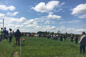 Cover Crop Field Walk at Brocks Family Diary Farm in Carney, Michigan, spring 2018. Photo by Monica Jean, MSU Extension.