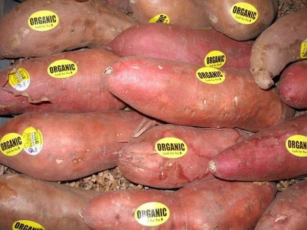 Organic potatoes.