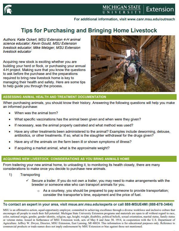 Tips for Purchasing and Bringing Home Livestock - 4-H Animal Science