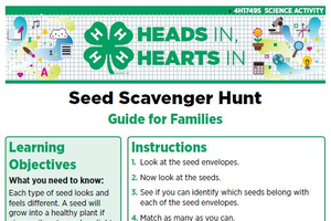 Seed Scavenger Hunt cover page.