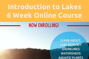 Learn about Michigan's lakes online