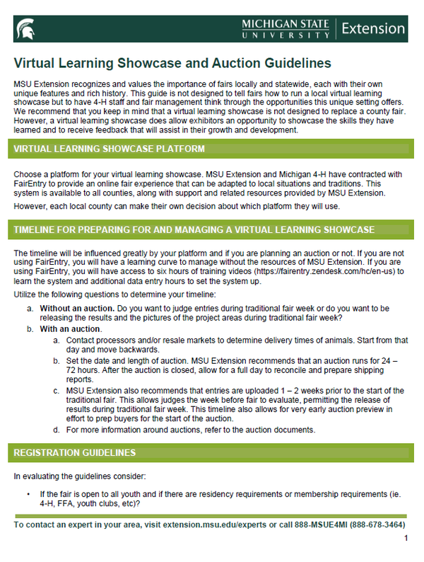 Snapshot of Virtual Learning Showcase and Auction Guidelines document.