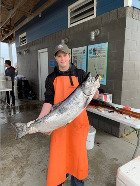 A man Jordan Andrus holds a large chinook salmon this year. He will process it to remove the stomach for the prey fish diet study.