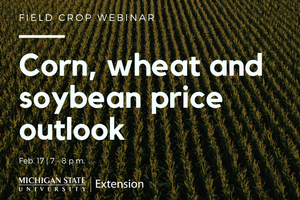 Field Crops Webinar Series: Corn, wheat and soybean price outlook