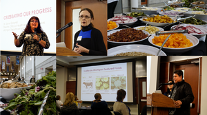 Collage of photos from the 2019 MFIN Gathering, including images of speakers, the buffet table, and presentation slides.